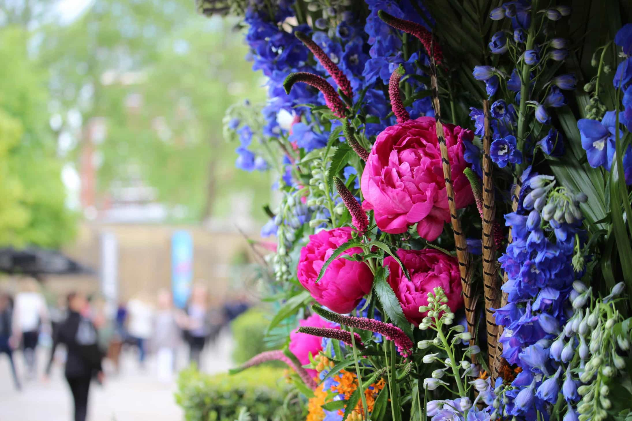 most instagrammable places across the London during the Chelsea flower show, chelsea in bloom, belgravia in bloom,  RHS, 2016, fenwick,