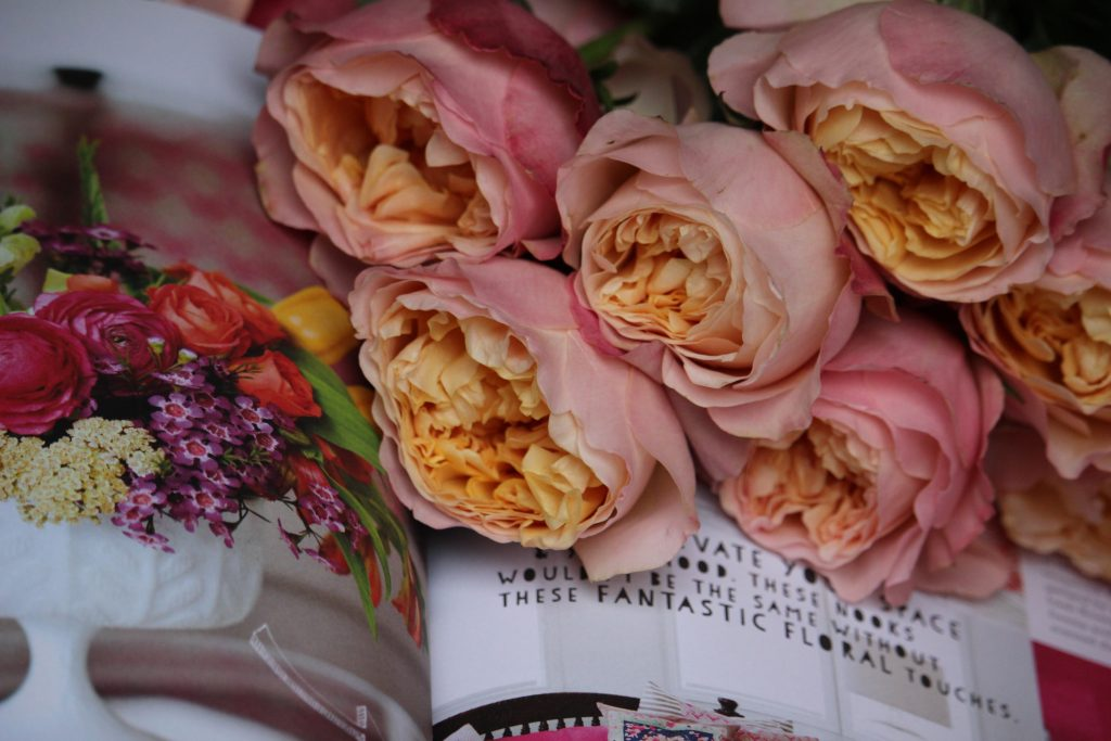 Books about roses, rose books, rose book, rose library, best books about roses, top 10 rose books, garden roses and books, flower arranging, rose gardening