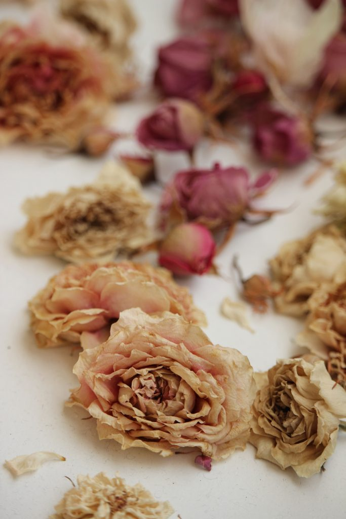 dry roses, best ways to dry roses, preserve flowers, preserve roses
